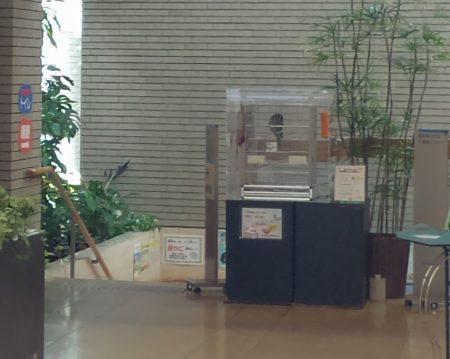 板橋区立熱帯環境植物館オウム01