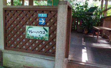 板橋区立熱帯環境植物館マレーハウス01
