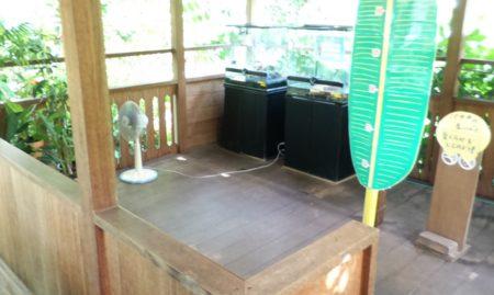 板橋区立熱帯環境植物館マレーハウス02