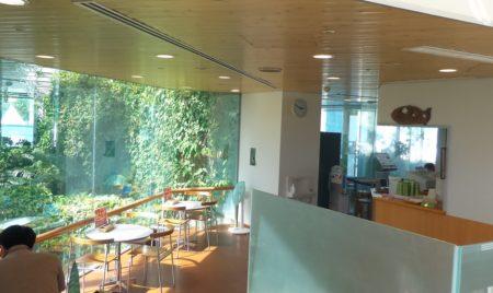 板橋区立熱帯環境植物館喫茶店01