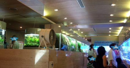 板橋区立熱帯環境植物館水族館01