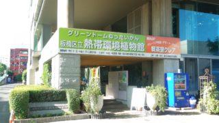 板橋区立熱帯環境植物館01