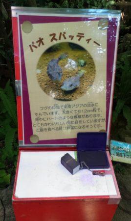 https://3bone.net/wp-content/uploads/2018/07/板橋区立熱帯環境植物館04.jpg
